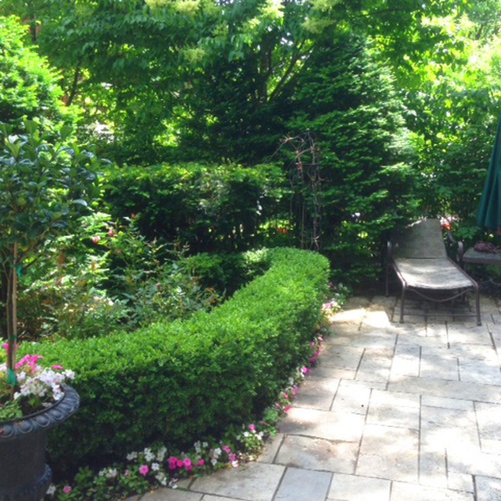 LANDSCAPE MAINTENANCE AND PLANTING OF ANNUALS
